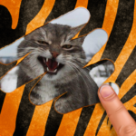 Scratch and guess the animal APK MOD 9.1