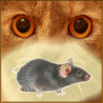 Mouse on the Screen for a Cat – Game for cats APK MOD 22.0