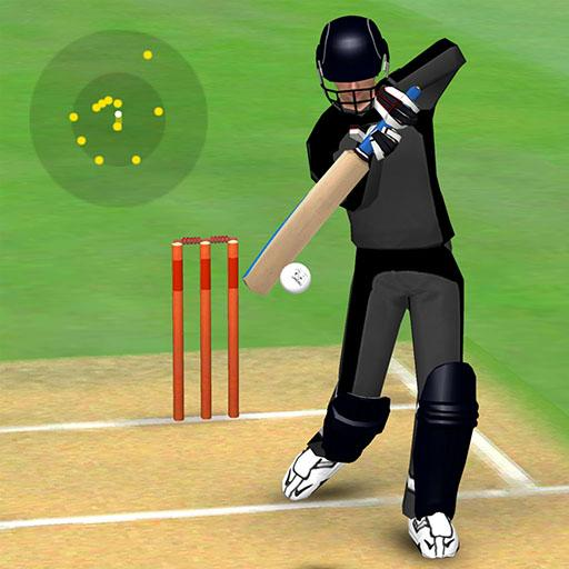 Smashing Cricket – a cricket game like none other APK MOD 3.0.2