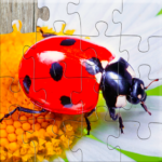 Insect Jigsaw Puzzles Game – For Kids & Adults 🐞 APK MOD 27.0