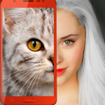 Kittens: what cat are you? prank APK MOD 2.7