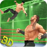 Tag Team Wrestling Superstars Fight: Hell In Cell APK MOD 1.1.3